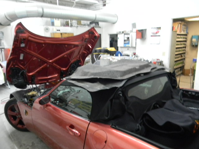 Punisher-hood-liner-trunk-liner-removed.jpg
